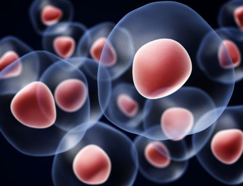 STEM CELLS: THE FUTURE OF MEDICINE BUT NOT READY FOR PRIME TIME